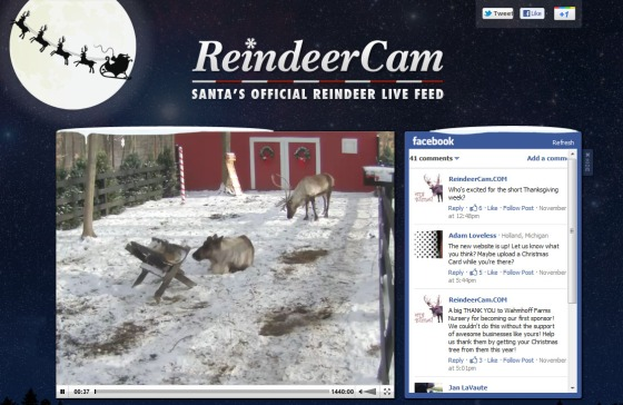 ReindeeerCam