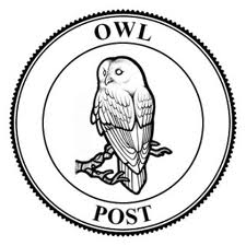 Harry Potter OWL Post Service Embroidered Iron on Sew on ...  Harry Potter Owl Service