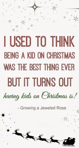 A Kid on Christmas_Growing a Jeweled Rose