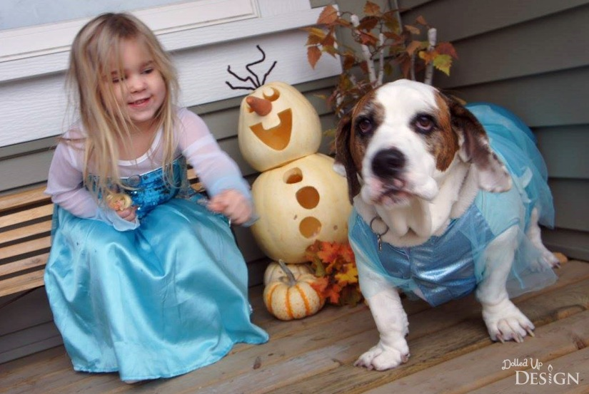 Elsa Costume and Dog Costume