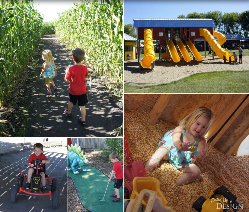 Great Summer Daycations In & Around Edmonton_Kraay Family Farms